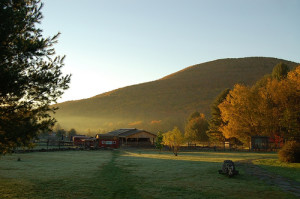 Woodstock farms animal sanctuary